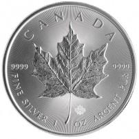 2014-canadian-silver-maple-leaf