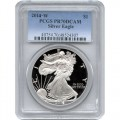2014-w-pcgs-ase-new